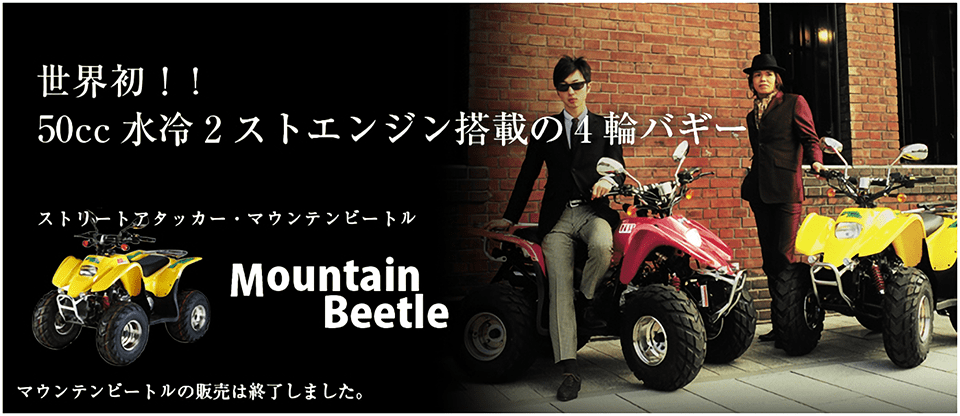 MOUNTAIN BEETLE
